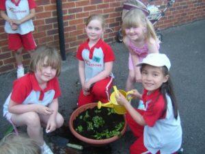 p_05_More_Rainbows_planting_flowers_for_St_Josephs_school_3_ezg_2